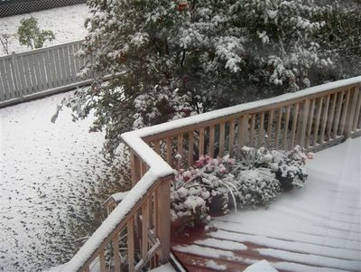 Snow - Oct 4