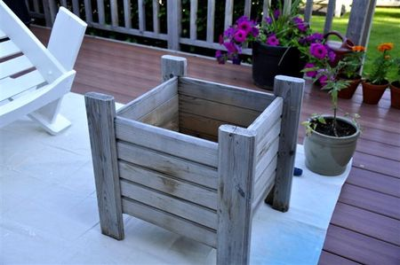 Planter before